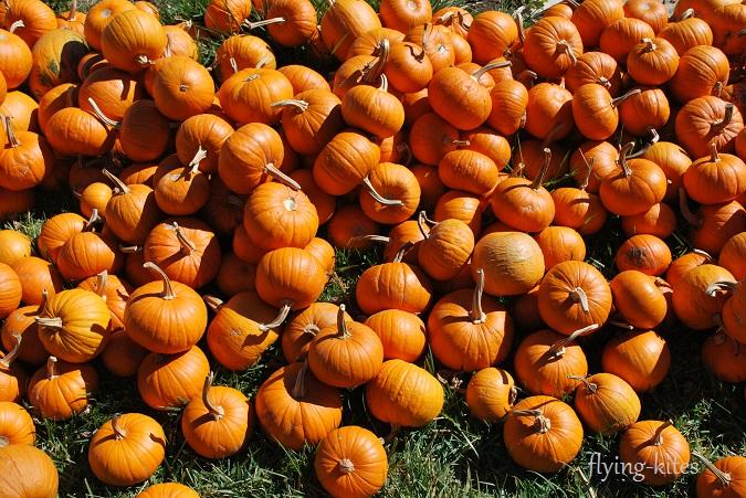 pumpkinparty20